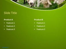 10060-01-sheeps-ppt-template-4