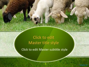 Free Sheep in a Field PPT Template