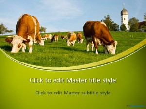 Free Cows PPT Template
