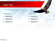 10184-america-eagle-ppt-template-0001-4