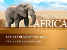 10195-elephant-africa-ppt-template-0001-1