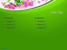 10200-springtime-ppt-template-0001-4