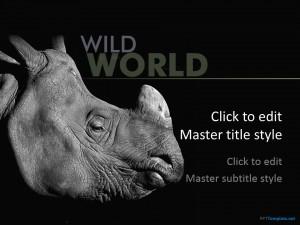 Free Rhinoceros PPT Template